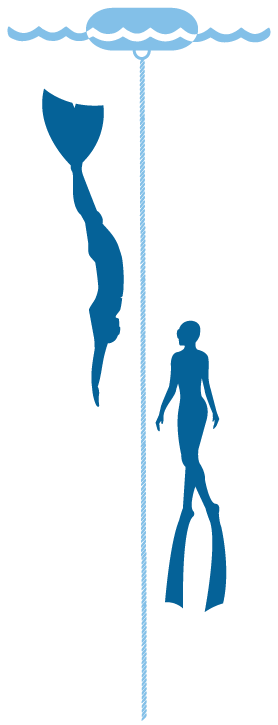 Blue Ocean Freedivers Graphic