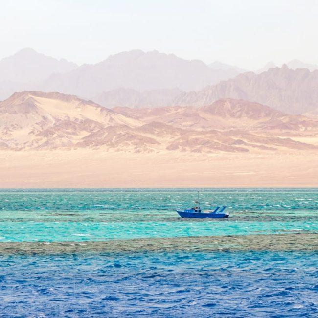 Coast of Dahab